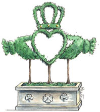 Claddagh-Topiary-in-Pot
