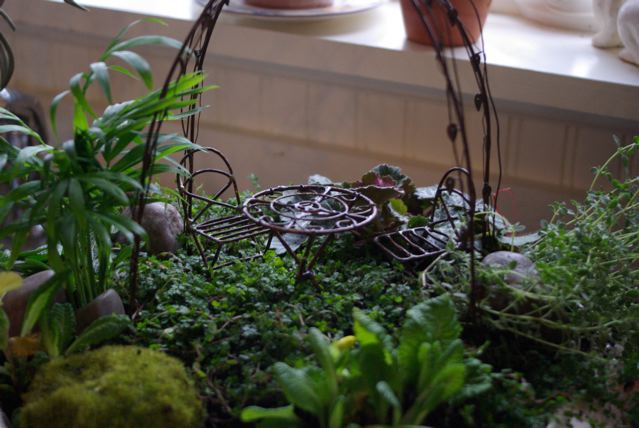 Indoor Fairy Garden Michelle Masters Topiary Art