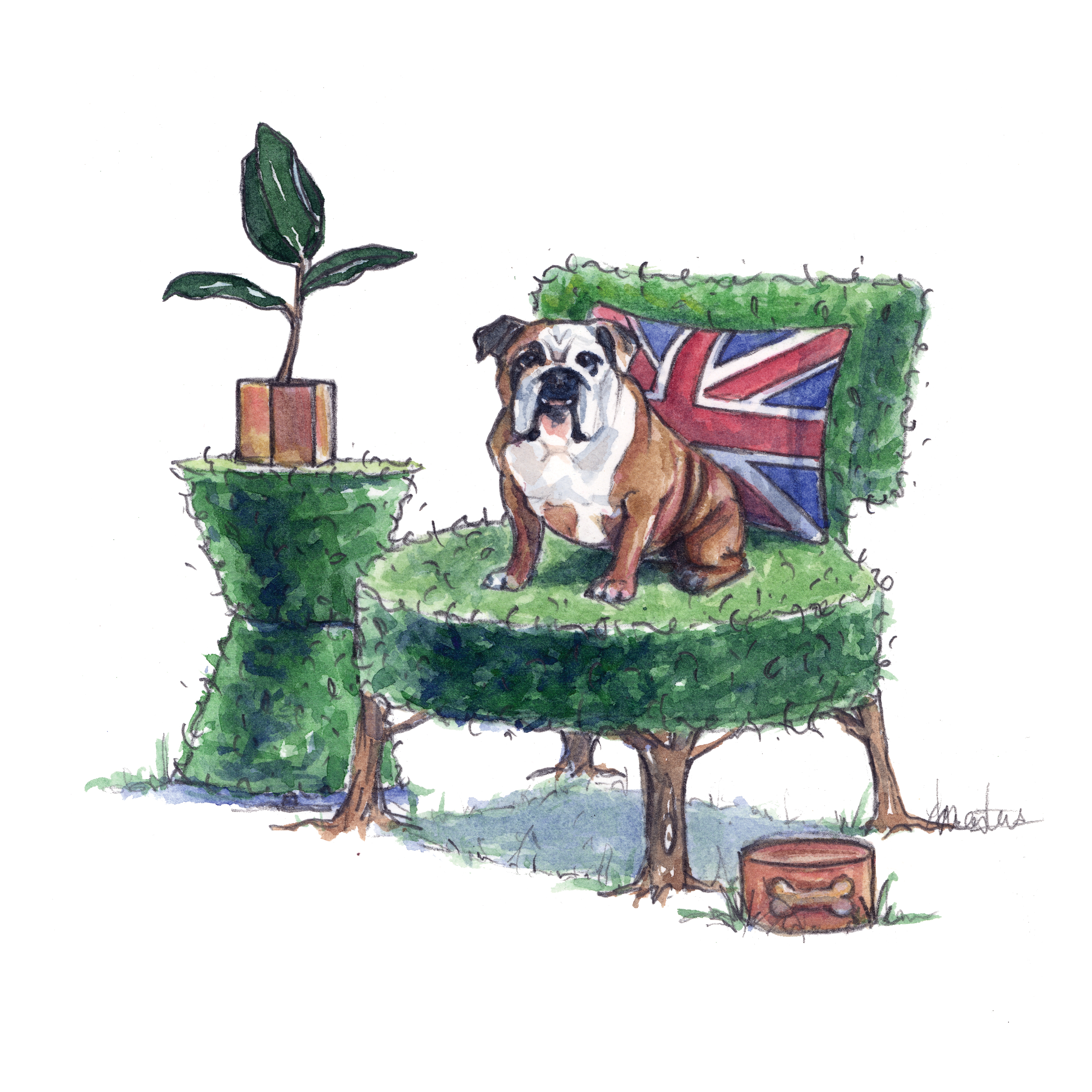 English Bulldog - Click Image to Close